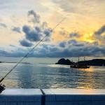 伊豆下田で釣りをお楽しみください。